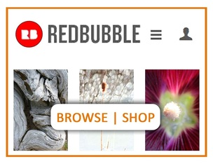 Browse|Shop Photography RedBubble