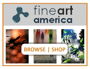 Browse|Shop Photography Fine Art America